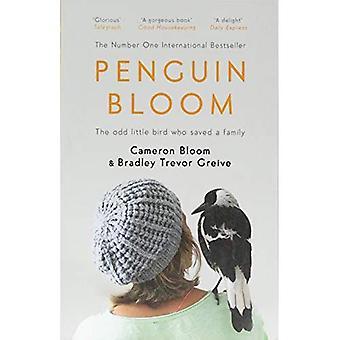 Pingvin Bloom: Den udda lilla fågeln som räddade en familj