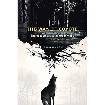 Långt av Coyote: delade resor i de urbana Wilds
