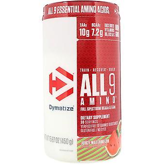 Dymatize Nutrition, ALL9AMINO, Juicy Watermelon, 15,87 oz (450 g)
