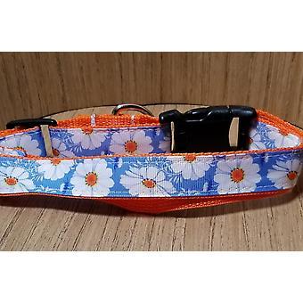 Collar/ Medium/ Blue And Orange Flower