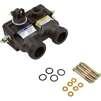 Pentair 474972 Manifold Kit for Pentair MasterTemp 125 Water System