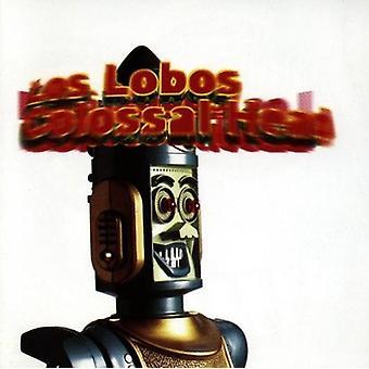 Los Lobos - cabeça Colossal [CD] EUA importar