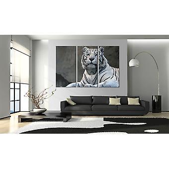 Maleri - Hvid tiger60x40