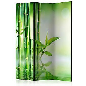 Vouwscherm - Green Bamboo [Room Dividers]