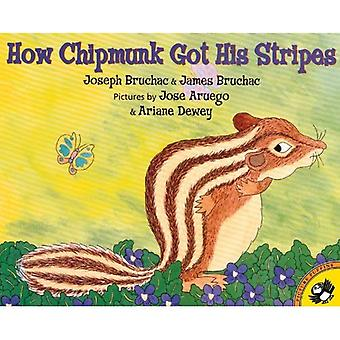 How the Chipmunk Got His Stripes