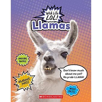 Llamas Wild Life Lol by Mara Grunbaum
