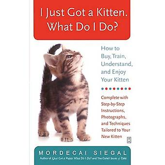 I Just Got a Kitten. What Do I Do How to Buy Train Understand and Enjoy Your Kitten by Siegal & Mordecai