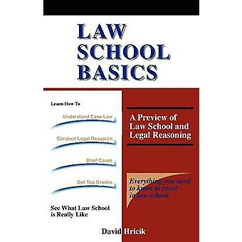 Law School Basics A Preview of Law School and Legal Reasoning by Hricik & David