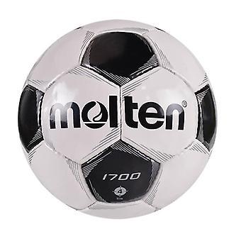 Smält fotboll officiell storlek