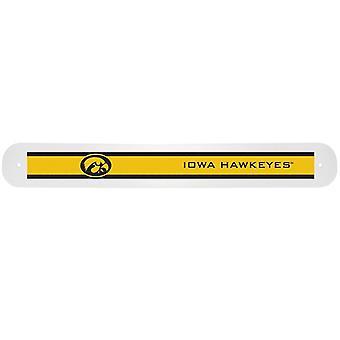 Iowa Hawkeyes NCAA Travel periuță de dinți cauza