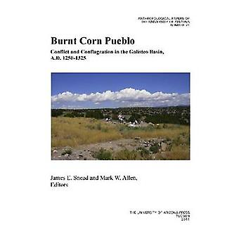 Burnt Corn Pueblo - Conflict and Conflagration in the Galisteo Basin -