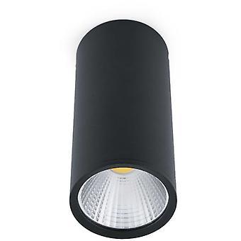 Wellindal Rel Black Ceiling Lamp Led 15W 60 2700K