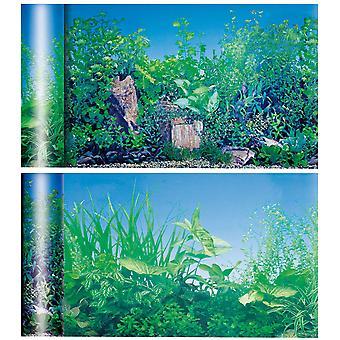 伊卡池塘/池塘基金(鱼类、装饰、背景)