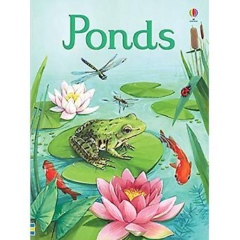 Ponds por Emily Bone - 9781474953627 Livro