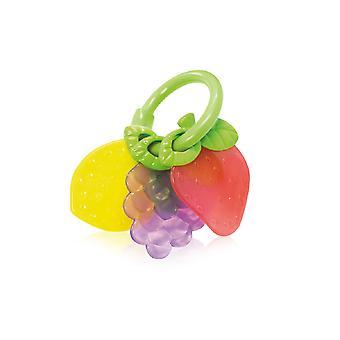 Lorelli, mordiendo frutas de anillo, apoyado en dentíricas, grifo, cascabel desde el nacimiento