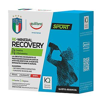 Re-mineral recovery 14 packets