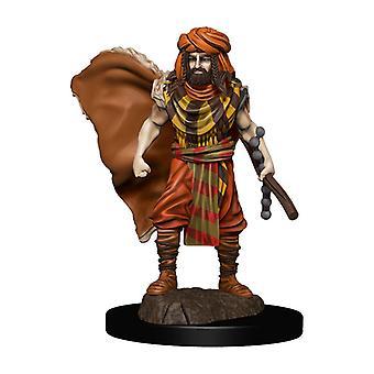 D&D-ikoner för Realms Premium Figures (W4) Human Druid Male