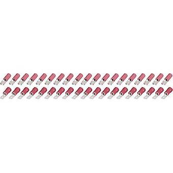 לעומת התקע שטוח אלקטרונית & מחברים בעלה נקבה 4.8 mm 40pcs. KSP 4.8-1-0.5/FSP 4.8-1-0.5 0.25 עד 1.5 מ ר מספר הפינים = 1