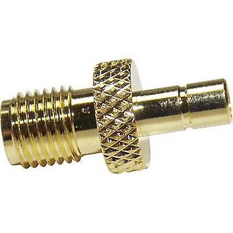 BKL elektroninen 0409056 SMA adapteri SMA pisto rasia-SMB plug 1 PC (s)