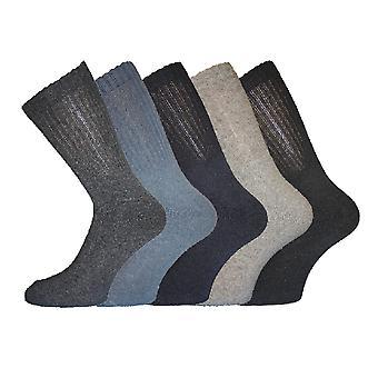 Miesten puuvilla rikas urheilu sukat 6-11 5Pk tavallinen perse