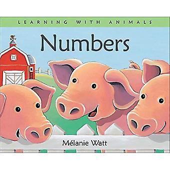Getallen (Learning met dieren serie)