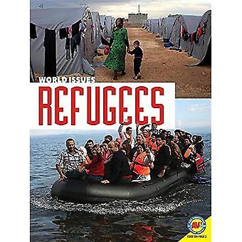 Vluchtelingen (delen van de wereld)