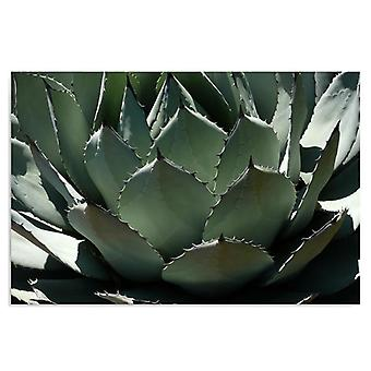 Deco Panel, agave 3