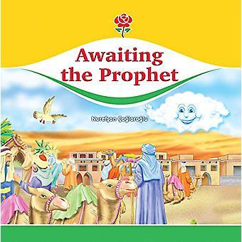 Awaiting the Prophet by Nurefsan Caglaroglu - 9781597849357 Book