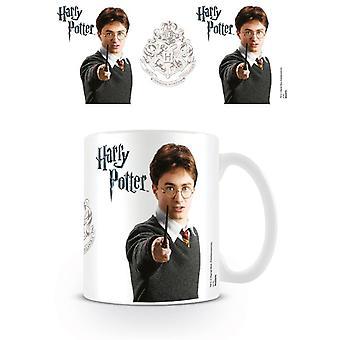 Harry Potter Harry Hrnček