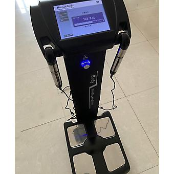 Sports Club Health Human Body Elements -analysis Weighting Scales Beauty Care