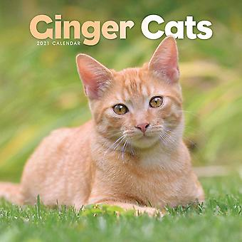 Otter House Square Wall Calendar 2021 - Ginger Cats