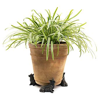 Potty fötter dekorativa Corgi hund tema växt pot fötter brons färg - uppsättning av 3