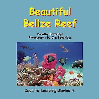 Beautiful Belize Reef by Beveridge & Dorothy