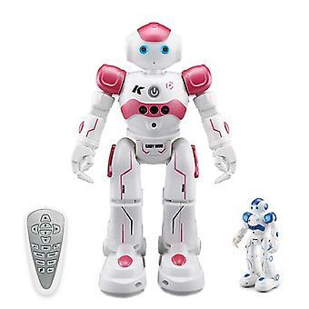 Robot Ir Gesture Control, Intelligent Robat Cruise, Dancing Kids