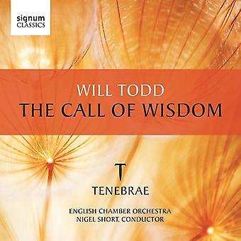 W. Todd - Will Todd: The Call of Wisdom [CD] USA import
