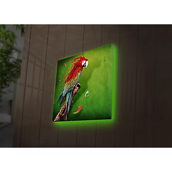 4040DACT-44 multicolor decoratieve led verlicht canvas schilderij