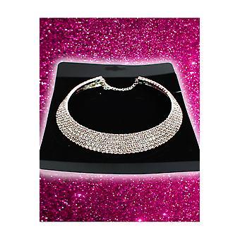 Juwelen en kronen hals sieraad