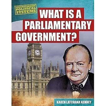Verständnis politischer Systeme Pack A 6 (Verständnis politischer Systeme)