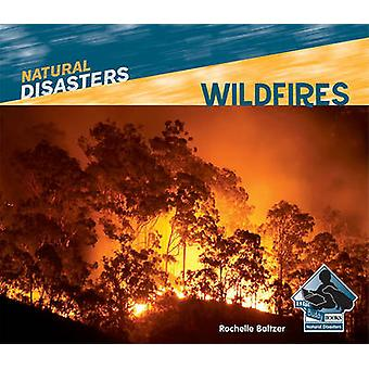 Wildfires by Rochelle Baltzer - 9781617830365 Book
