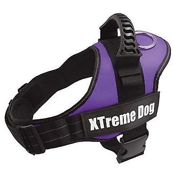 Arquivet Arnés Xtreme koira (koirat, kaula pannat, liidit ja valjaat, valjaat)