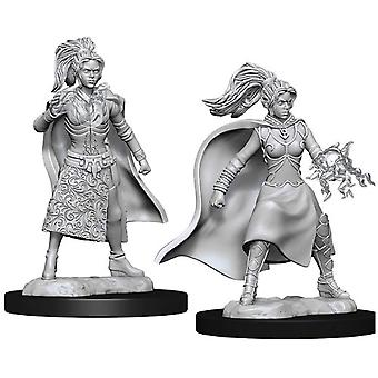 Human Female Sorcerer Dungeons & Dragons Nolzurs Marvelous Miniatures (6 Packs)