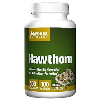 Jarrow Formler Hagtorn, 500 mg, 100 Kepsar