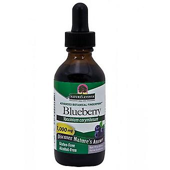 Nature's Answer Blueberry Fruit, Alcohol Free, 2 Oz