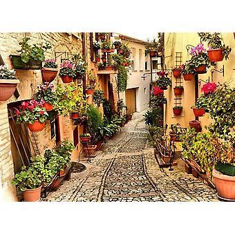 Tapeter väggmålning Alley i Spello Umbria