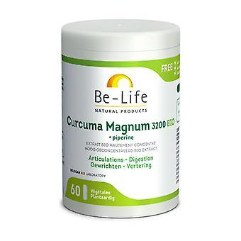 Curcuma Magnum 3200 60 capsules