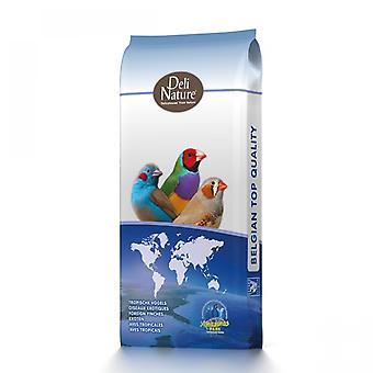 Beyers Foreign Finch Super Deli Nature (Birds , Bird Food)