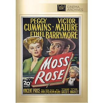Importer des USA de mousse Rose [DVD]