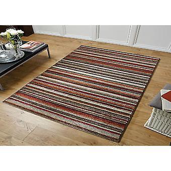 Viva 2525 N Rechteck Teppiche moderne Teppiche