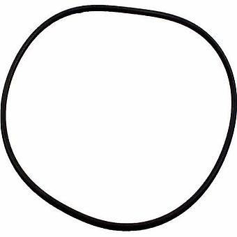 Jandy Zodiac R0555400 Topf Deckel o-Ring