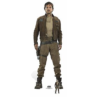 Captain Cassian Andor (Rogue One) Diego Luna